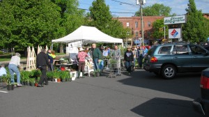 2013 spring plant sale